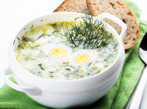 Hash soup. Spring hash soup in white bowl on the green napkin royalty free stock photography