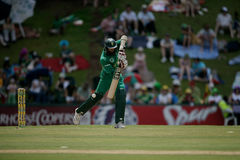 Hashim Amla Royalty Free Stock Photography
