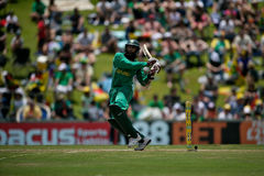 Hashim Amla Stock Photography
