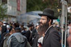 Hasid с бородой, скручиваемостями стороны и шляпой Стоковая Фотография RF