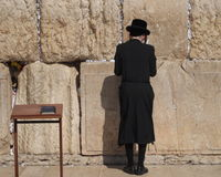 Hasidic jew praying at Western Wall Royalty Free Stock Image