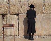 Hasidic jew som ber på den västra väggen royaltyfri bild