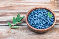 Haskap莓果蓝色莓果收获  库存图片