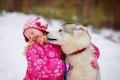 Hasky hund som slickar lilla flickan royaltyfri fotografi