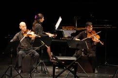 Hasmik Leyloyan活动,弹小提琴的艺术家 免版税库存照片