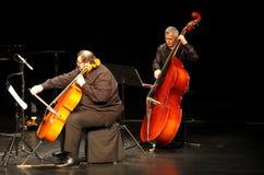 Hasmik Leyloyan händelse, leka bas för konstnär & violoncell Royaltyfri Bild