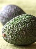 Hass-Avocados Stockbilder