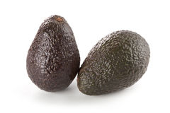 Hass Avocados. Two whole hass avocados isolated on white background Royalty Free Stock Photography