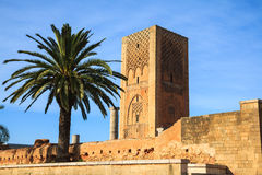 Hassan Tower i Rabat royaltyfria foton
