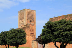 Hassan Tower Rabat Marocko Royaltyfri Foto