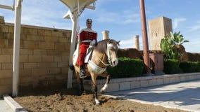 Hassan wierza w Rabat, Maroko zbiory wideo