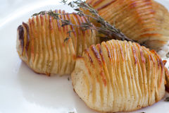 Hasselback Swedish potatoes closeup Stock Photos