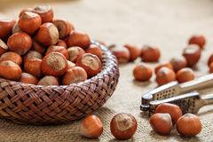 Hasselnötter i en korg Royaltyfria Foton