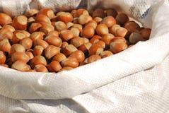 Hasselnötter i en påse Royaltyfri Fotografi