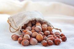 Hasselnötter i en påse gjorde ‹för †av kanfas Royaltyfri Bild