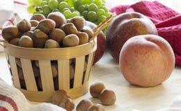 Hasselnötter i korgen Royaltyfri Fotografi