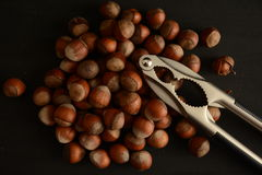 Hasselnötter med nötknäpparen Arkivfoto