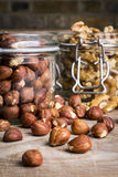 Hasselnötter med valnötter och krus - 4 Fotografering för Bildbyråer