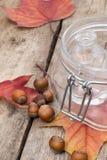 Hasselnötter och höstsidor Royaltyfri Fotografi