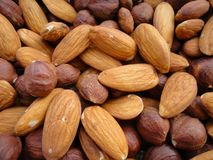 Hasselnötter och mandelbakgrund Arkivfoto