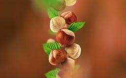 Hasselnötter och sidor som faller från luften royaltyfri fotografi