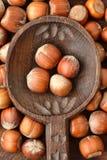 Hasselnötter på träskeden Arkivbild