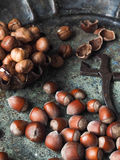 Hasselnötter spridde på ett gammalt metalluppläggningsfat och tång för muttrar Arkivbild
