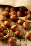 Hasselnötter spridde ut ur påsen på gammal träbakgrund Arkivfoto