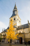 Hasselt Cathedral, Belgium Royalty Free Stock Photo