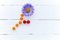 Haste de Violet Chrysanthemum e folhas de tomates de cereja fotos de stock royalty free