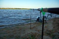 Haste do alimentador no banco do rio Dvina do norte imagem de stock