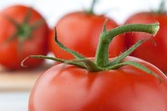 Haste do tomate Imagens de Stock