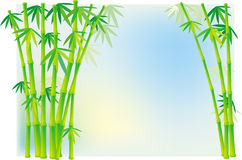 hastes de bambu Imagens de Stock