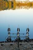 Hastes de pesca da carpa Fotografia de Stock