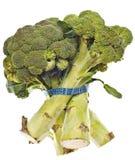 Hastes saudáveis dos bróculos Foto de Stock