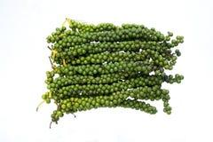 Hastes verdes amadurecidas do grão de pimenta foto de stock