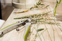 Hastes verdes com a tesoura de podar manual no florista imagem de stock