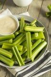 Hastes verdes orgânicas cruas do aipo Fotos de Stock
