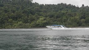 Hastighetsfartyg i havet stock video