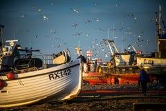 Hastings的渔船队 免版税图库摄影
