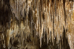 Hastings Cave Stock Photography