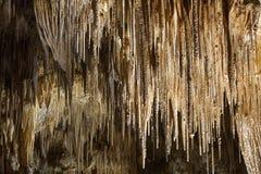 Hastings grotta Arkivbild