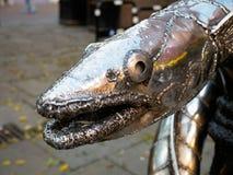 HASTINGS, SUSSEX/UK ORIENTALE - 6 NOVEMBRE: Re Wrapped nel Coi Fotografie Stock Libere da Diritti