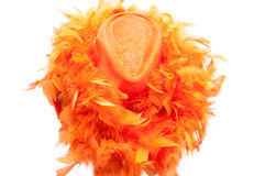 Hat and boa as tipical accessories of revellers on Koningsdag in Amsterdam. The Netherlands. Stock Photography