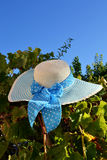 Hat with bow. White hat with a plue polka dot bow on leaves Royalty Free Stock Photography