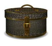 Hat box  crocodile leather . coffer Royalty Free Stock Photo