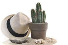Hat and cactus on the sand Royalty Free Stock Image