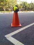 Hat. Cones. Rode. Tree. Hat. Handing. On. Cones stock photos
