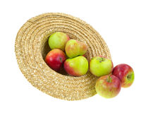 Hat filled with spilling apples Stock Images