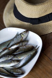Hat and fishes Stock Photo